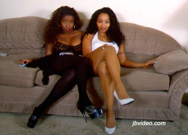VANESSA & KITTEN DVD